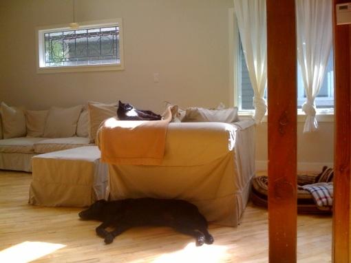 sleeping-in-symmetry