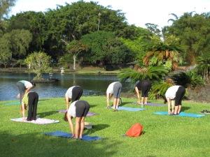 lilipark-yoga-uttana