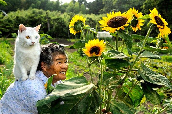 grandmother-and-cat-miyoko-ihara-fukumaru-2