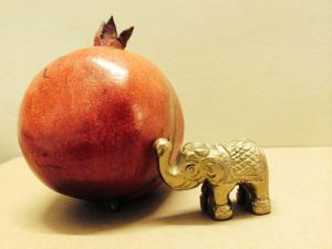 elephant pomegranate