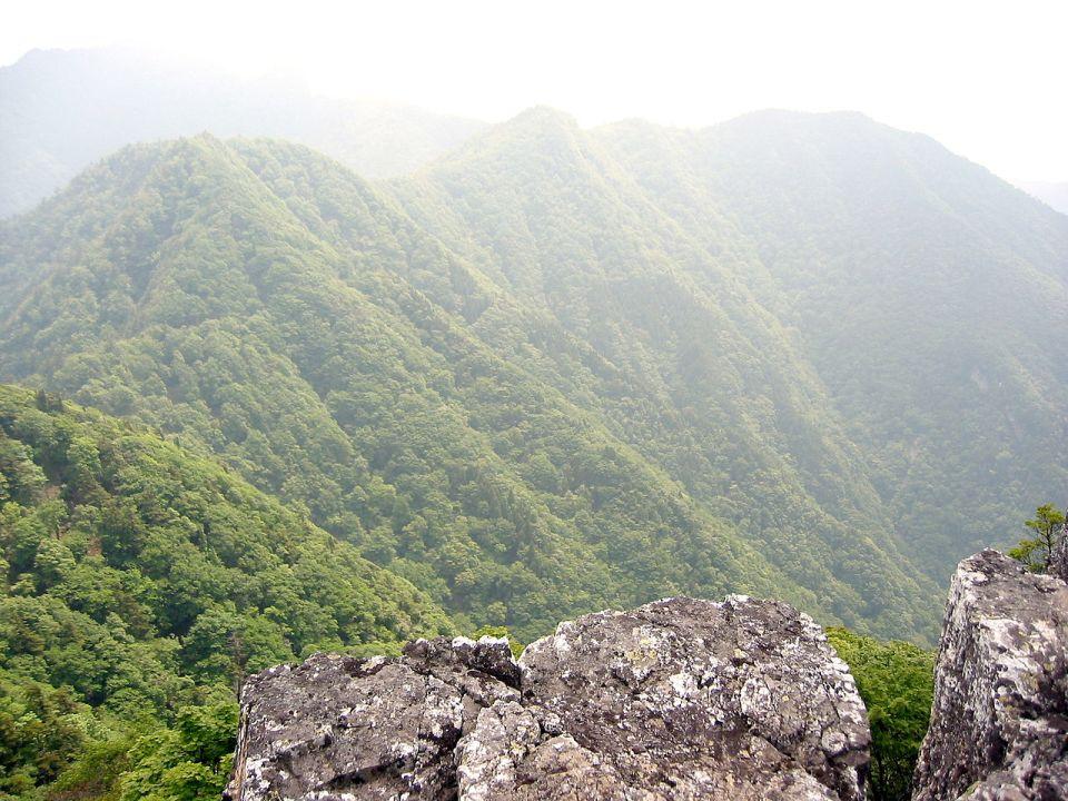 Nara,_mount_Omine_2005